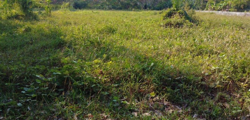 Land for sale in Khaolak 10 Minutes to the beaches