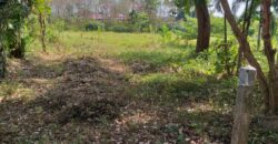 Beau terrain à vendre à Khaolak