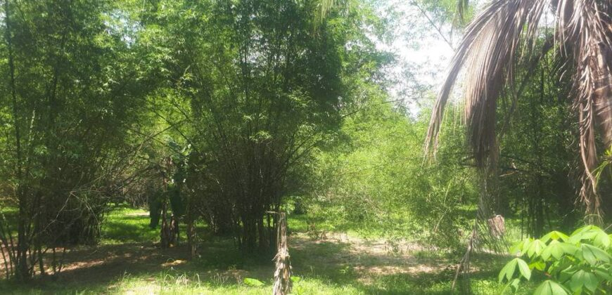 Large plot of Land for sale, 3 Km away from Khuek Khak beach