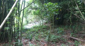 Land near waterfall for sale in Khaolak