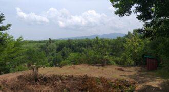 A vendre 2 terrains de 1600m2 à 20mn de Khao Lak