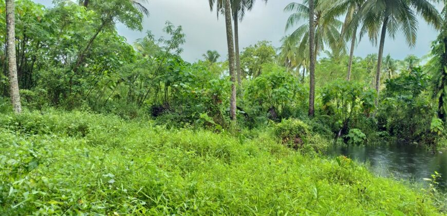 Unspoiled Land for sale in Bangsak, 15 minutes from Khao Lak and 5 minutes from beaches.