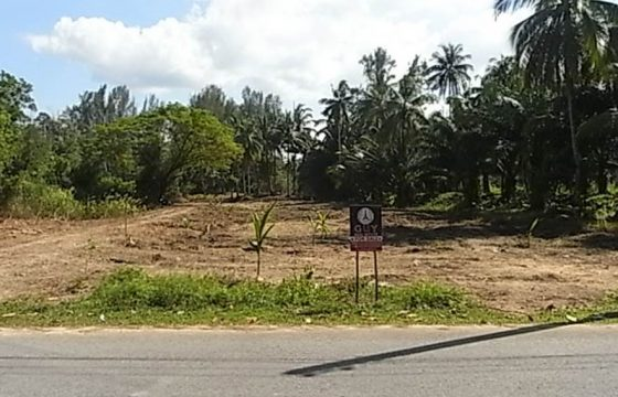 Beautiful Land For Sale In Bangsak, 15 Minutes From Khao Lak And 5 Minutes From Beaches.