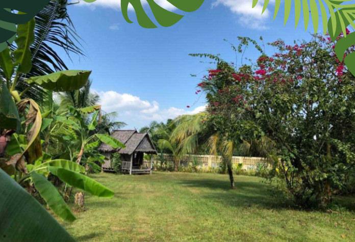 Villa avec piscine et grande terrasse donnant sur immense jardin à vendre