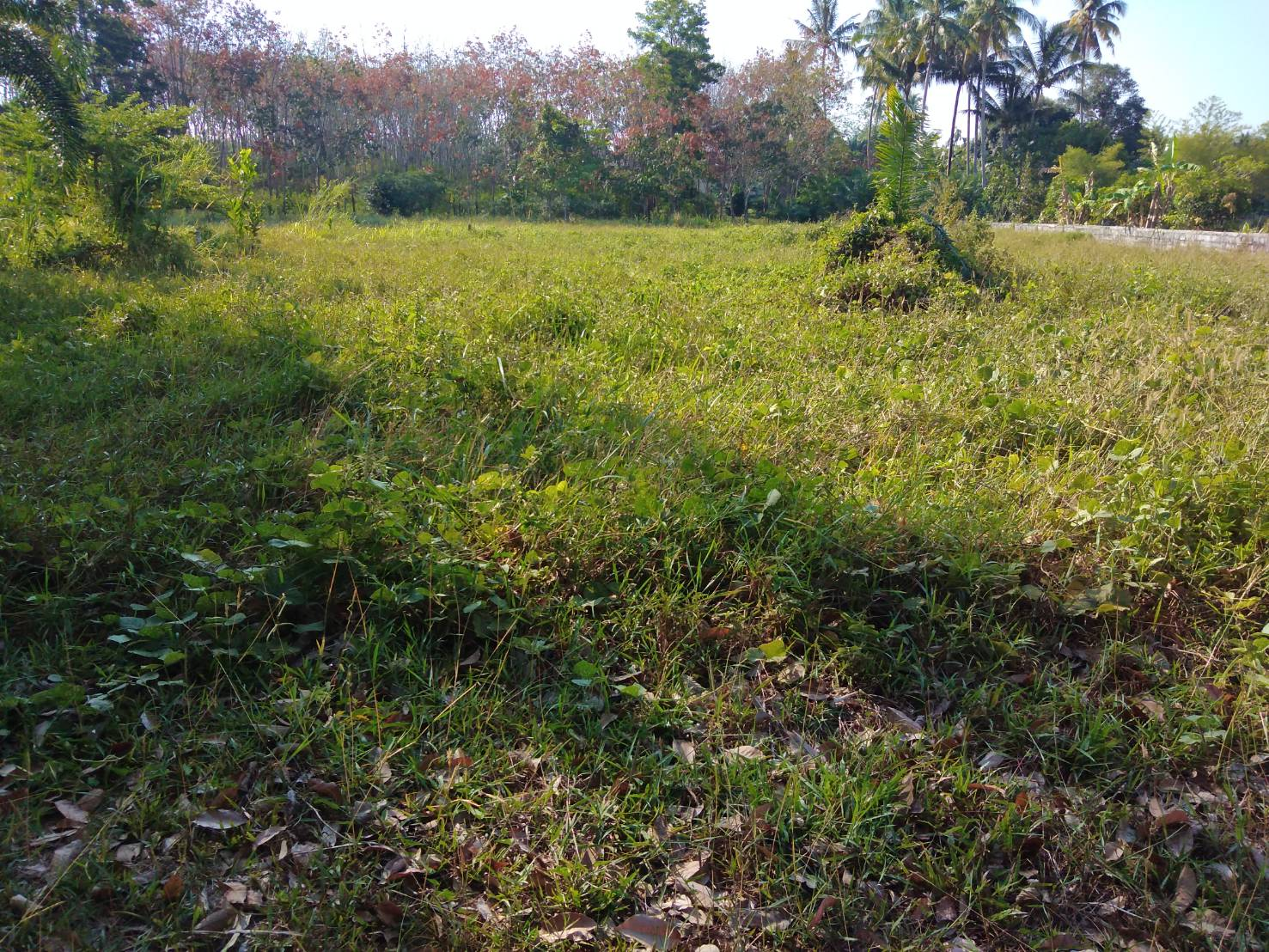 Land for sale, 5 Minutes to the Memory beach